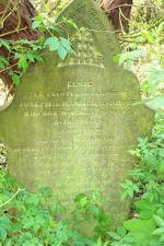 Brocklehurst - Hannah C1847-1908
